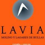 LAVIA BODEGA  DO BULLAS