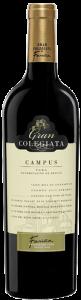 gran_colegiata_campus